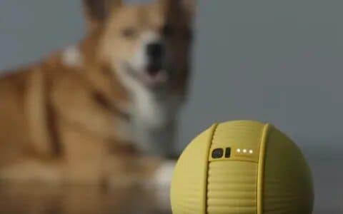 robot-inteligencia-artificial-Samsung-Ballie