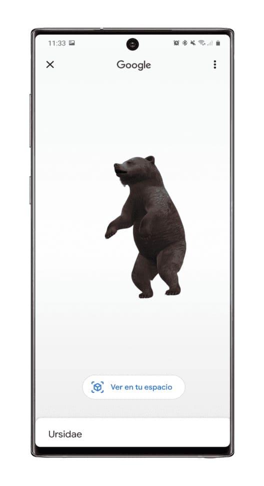 Google-animal-AR-oso