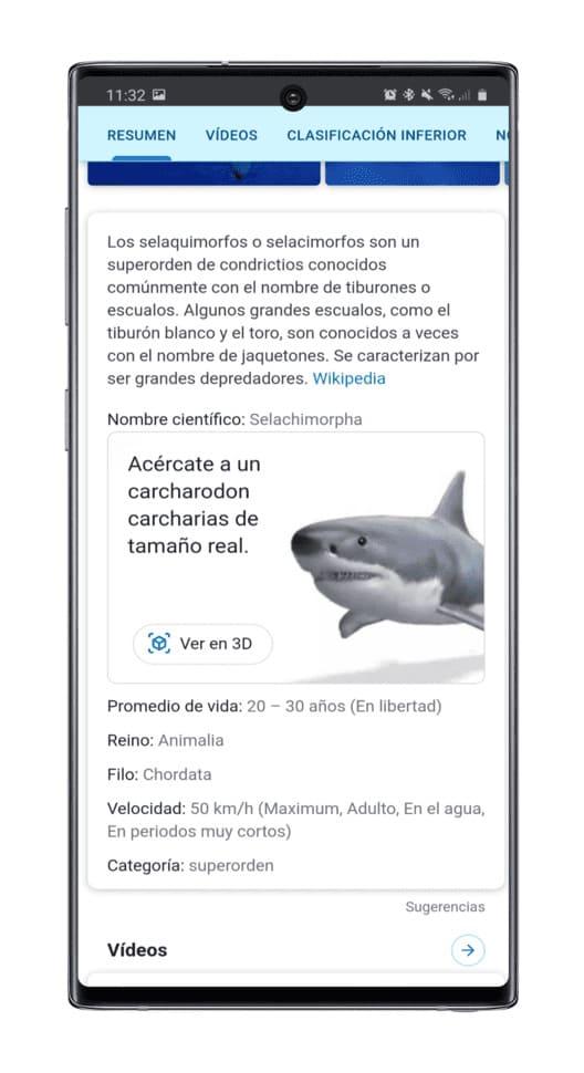como-ver-animales-AR-Google