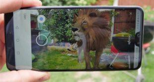 lista-smartphones-compatibles-animales-3D-Google