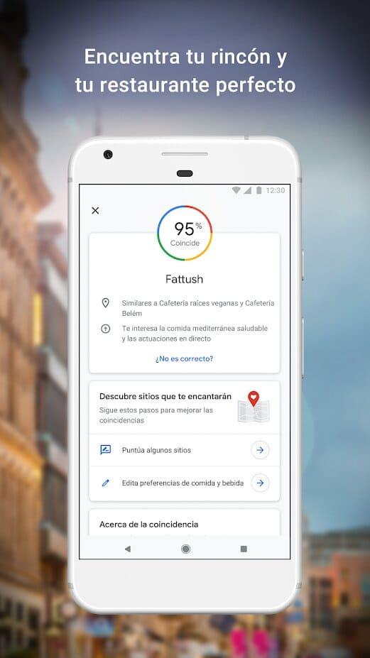 app-widget-google-maps