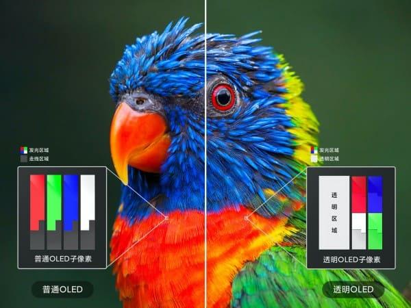 colores-pixeles-oled-xiaomi