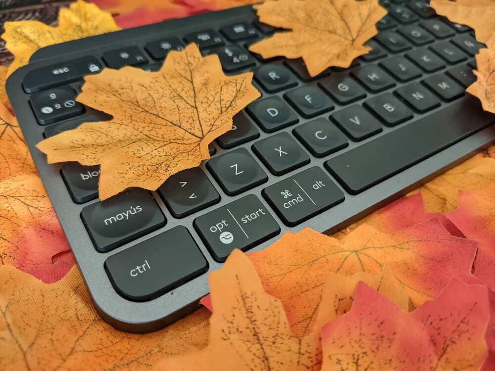 teclado-inalambrico-logitech-mx-keys-entre-hojas-perspectiva