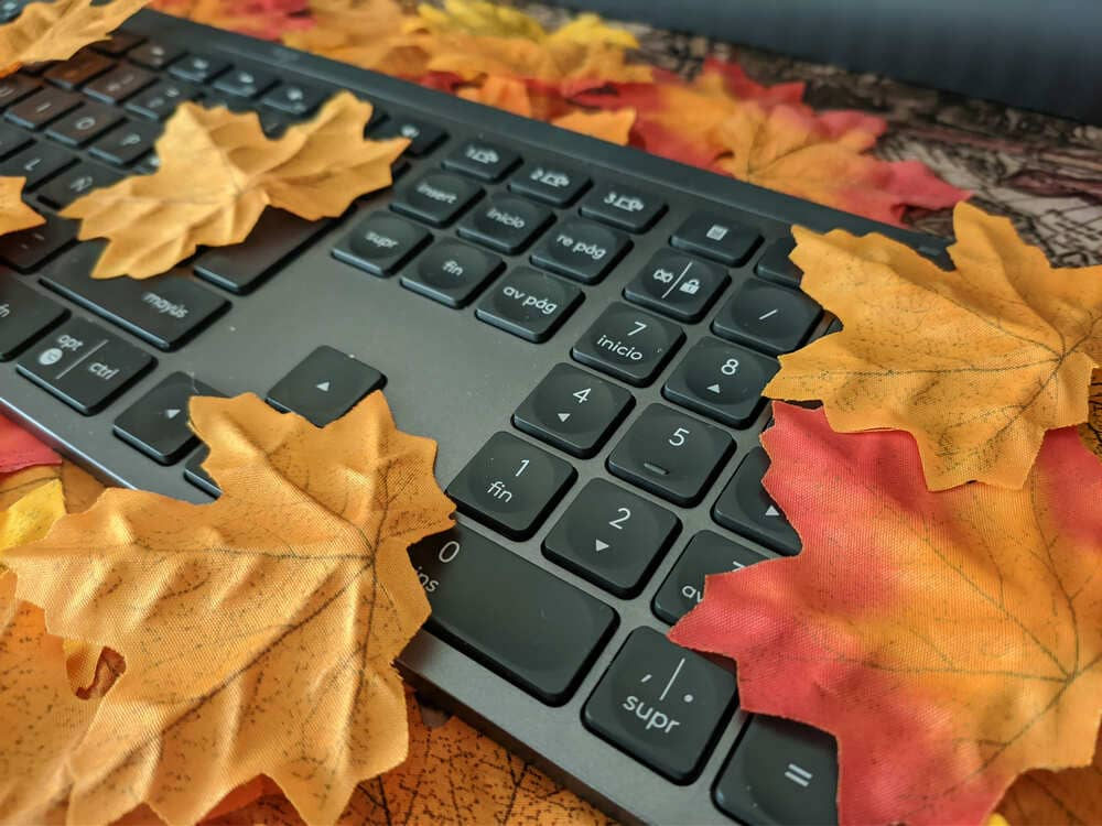 teclado-inalambrico-logitech-mx-keys-entre-hojas-primer-plano
