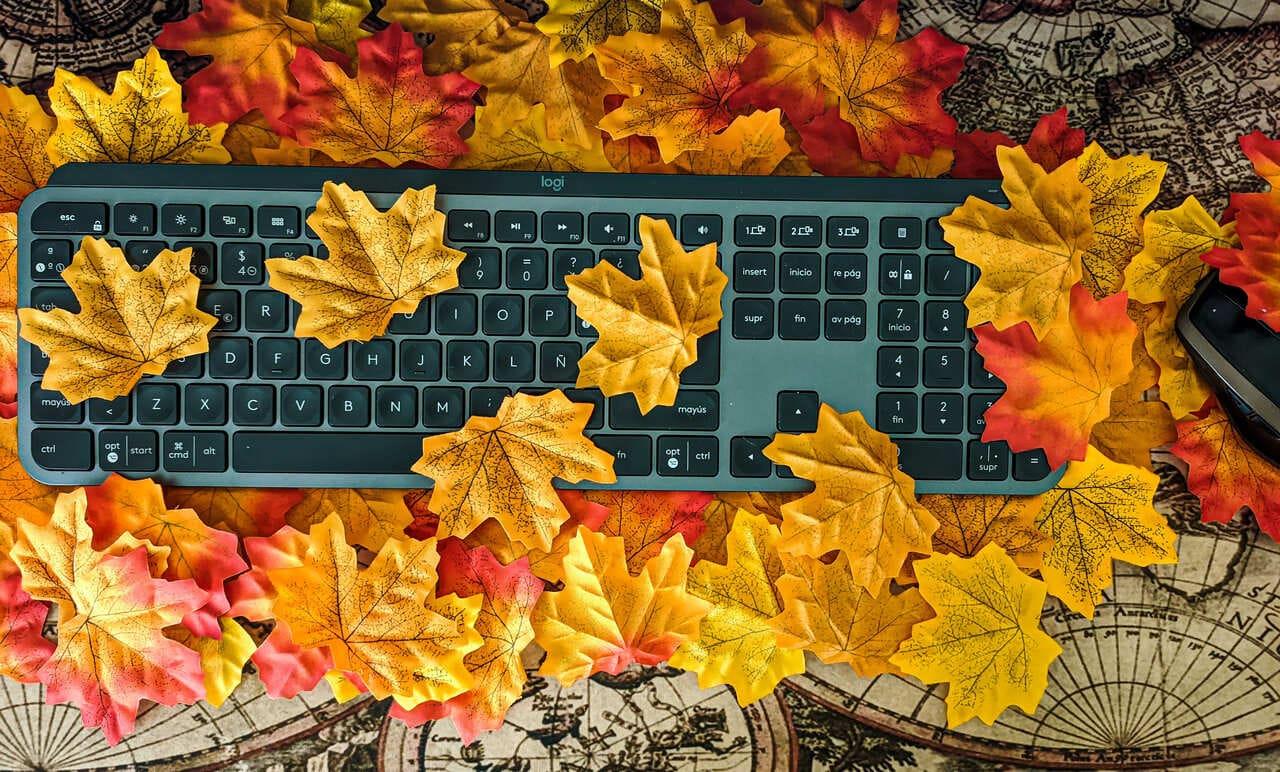 teclado-inalambrico-logitech-mx-keys-raton-mx-anywhere-2-sobre-hojas