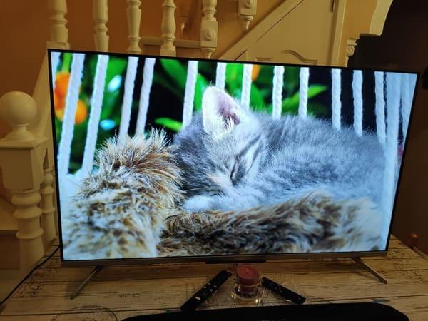 TCL-55C715-television-qled-barata-gato-durmiendo