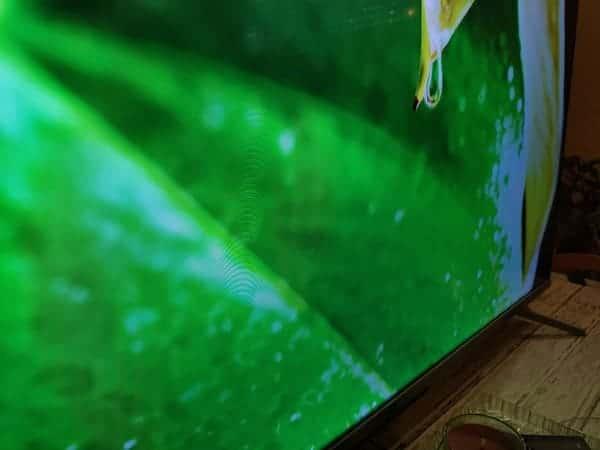 TCL-55C715-television-qled-barata-prueba-color-verde-hoja