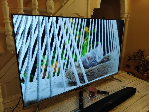 TCL-55C715-television-qled-barata-prueba-imagen-gato-contraste-blanco